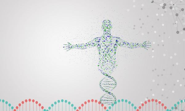《化学科学》:日本团队用单分子动力学分析DNA杂交的基本过程