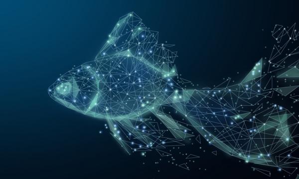从鱼变成人,我们的基因在进化中到底发生了什么?