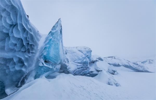 打破规则!英国科学家首次记录了南极冰架下900米处的神秘生命体