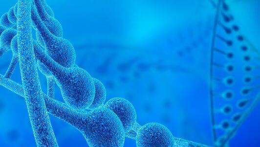 """为什么癌症化疗后会频繁复发?新的研究发现癌细胞假装""""衰老""""以逃避化疗"""