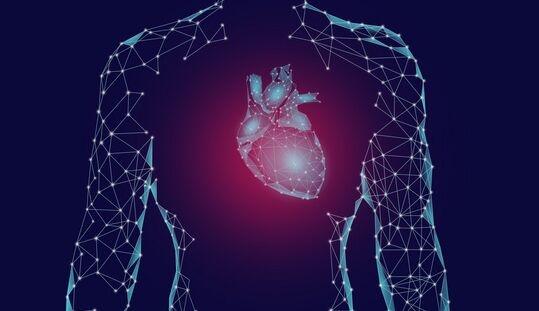 拯救心肌梗死!上海交大团队开发全新治疗策略,实现血管再生+心脏功能恢复
