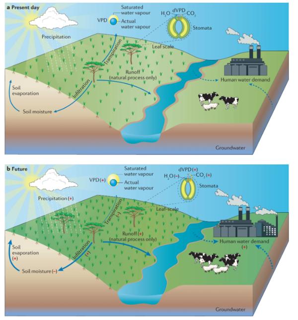 事关25亿人的生态研究:中外学者团队发表全球干旱区变化差异研究