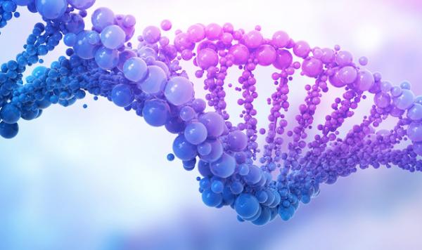 科学家将《独立宣言》的拷贝放入人类基因