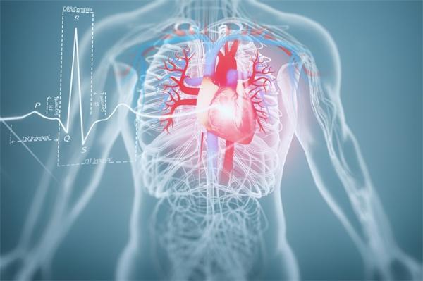 心血管病患者的福音!中国专家自主研发完全可降解支架