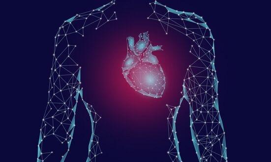 人造心脏瓣膜植入绵羊体内后能继续生长 心脏缺陷儿童无需反复手术替换瓣膜
