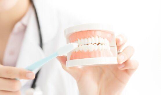 日本科学家发现先天牙齿发育不良秘密 一种基因抗体刺激小鼠成功长出牙齿