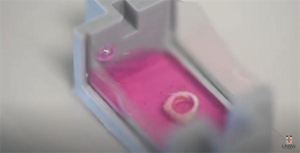直接在人体内进行3D打印?澳科学家研发含有人类本体细胞的仿生骨骼材料,可生成原生骨骼