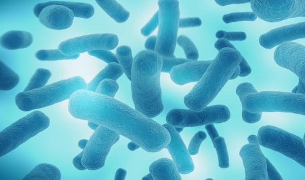 钻到地下也逃不了:新研究在地下448米处发现全新病毒和细菌