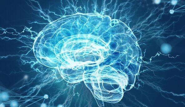 科学家开发传感器可精准监控大脑通信 终于搞懂为啥老年痴呆药物疗效有限
