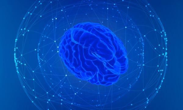 甩马斯克一大截!科学家用超声波脑机接口成功预测肢体行为