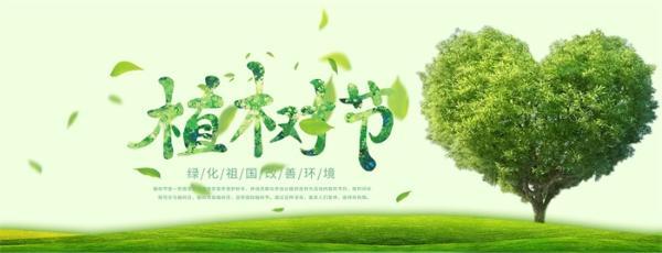 今天植树节!你参与过这个5亿人的大项目吗?