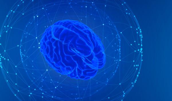 新研究:把猛犸象吃灭绝后,人类的脑子变大了