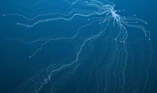 用石墨烯制造新的量子结构会产生奇怪的电子、磁性和拓扑性质