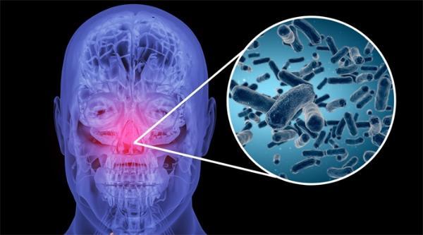 """攻击全身!罕见自身免疫疾病导致女子鼻塌发炎,一种抗体令白细胞""""失灵"""""""