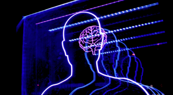 """脑子里的神经元到底""""吃""""啥?南方科技大学团队揭示其中奥秘"""