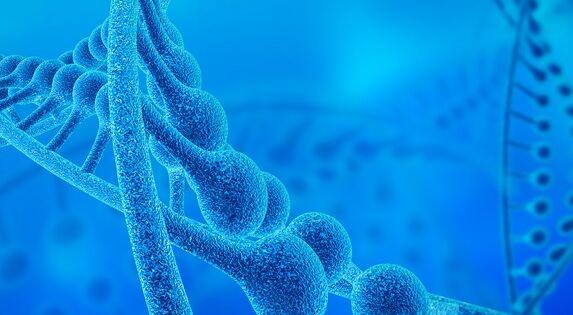 美国发起人类体细胞基因组编辑计划 加速各种疾病新疗法的临床开发