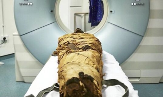 2600年前破获的一起谋杀案!著名的女木乃伊被斧头砍死了 凶手可能是亲戚
