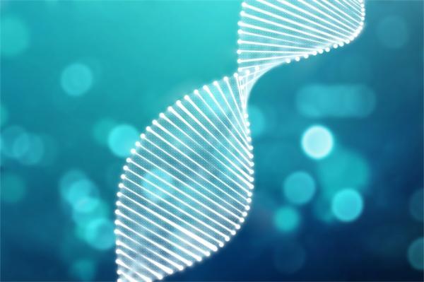 迄今最完整精确版本!脊椎动物基因测序获重大成果,有望解码7万物种生命奥秘