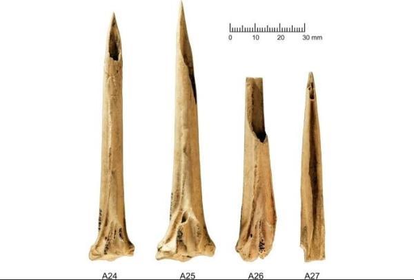 3000年前美洲原住民就用上!迄今最古老的纹身工具被发现:火鸡骨制成