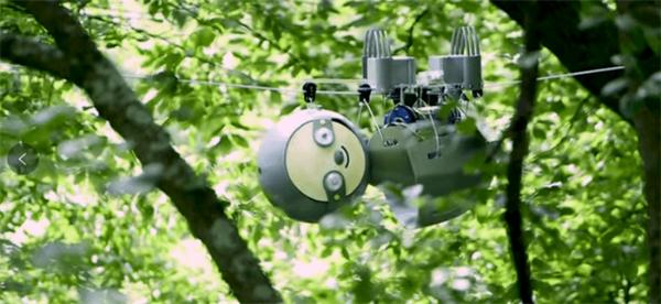 科学家发明树懒机器人,要的就是慢!
