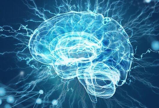 多巴胺不仅让你为爱冲昏头脑 还能让你话到嘴边却突然忘了