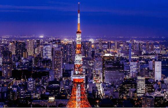 """日本躺平青年不婚化趋势加剧 逼得70岁老父老母""""代理相亲"""""""