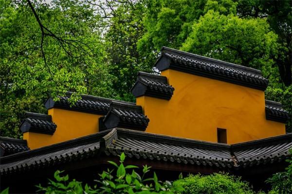 历65载苦修!中国佛学院首批博士生通过答辩,4名僧才从佛教最高学府毕业