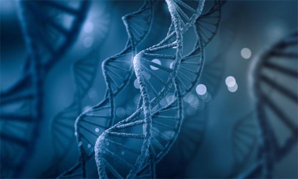 人类染色体质量首次被精准测量!有多重呢?你根本无法想象……