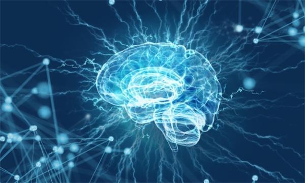 """胆小怕黑?光线会抑制人类大脑杏仁核的活动,亮灯时""""功能连接""""变强"""