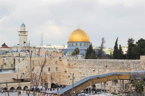 """罕见!耶路撒冷古宅中发现了一具2700年前的猪骨架,富人""""破戒""""吃猪肉"""