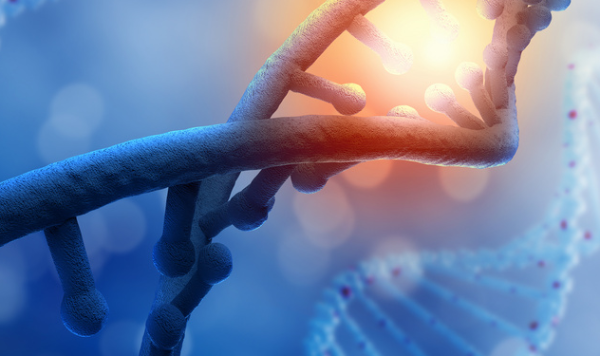 同化能力惊人!科学家在泥土中发现未知染色体,包含多种微生物的遗传物质