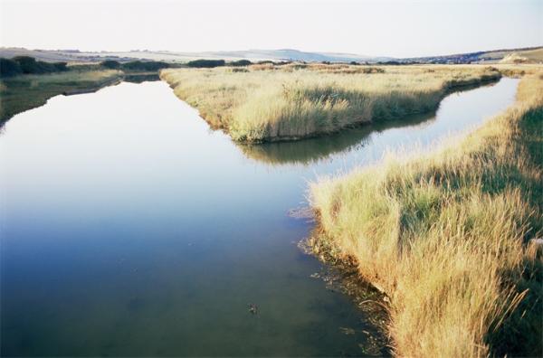 """丹麦""""沼泽人""""2400年前最后的一餐:在祭祀仪式被杀死之前,吃了谷粥和鱼"""