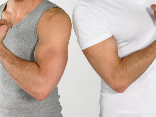 欲延寿,先自宫!研究发现阉割后的雄性绵羊衰老速度减缓