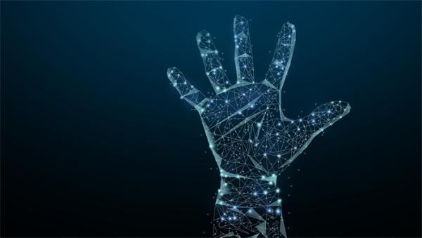 """""""一手之力""""或将开启新时代!俄专家开发手掌静脉识别新技术"""