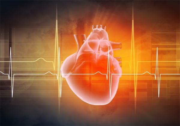 你的第一份工作可能会决定你以后是否会得心脏病,并不全是因为收入