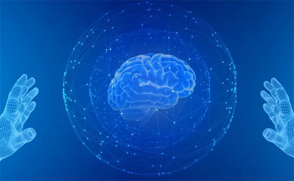 男女大脑究竟有多大差异?迄今为止最大规模研究揭晓答案
