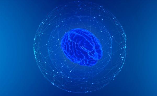 以形补形?科学家发现人脑连接能帮助构建更好的人工智能