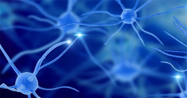 """""""渐冻症""""关键蛋白指标在实验室被逆转,阻断了病变细胞中酶的活性"""