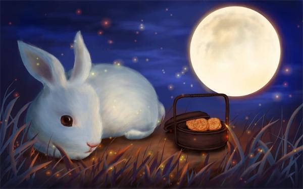 罕见!世界上最稀有的一只条纹兔子获救,被列为极度濒危物种