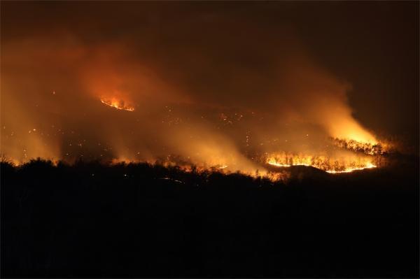 全球山火释放的二氧化碳总量 相当于地球上又多了一个欧盟