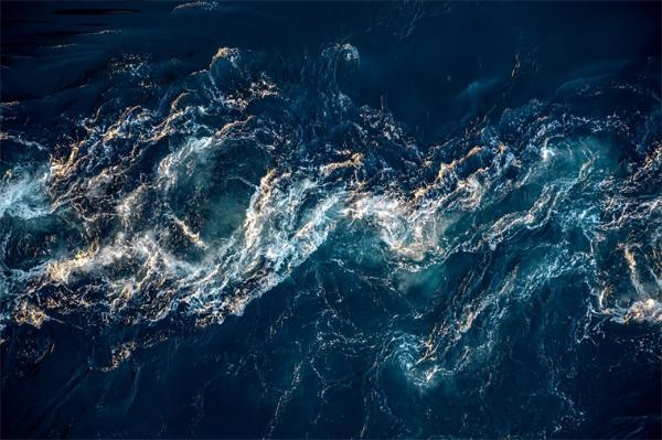 史前顶级海洋杀手!中科院首次在我国发现2.9亿年前的史前巨鲨