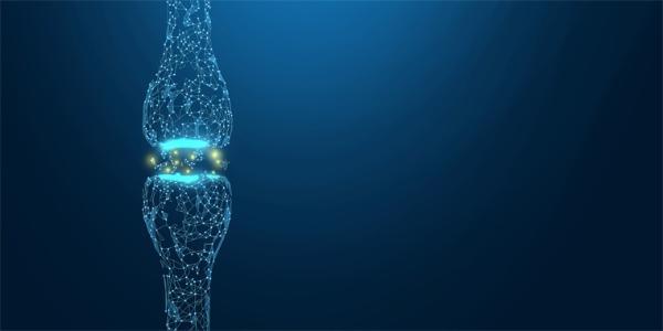 强骨方法来了!可注射水凝胶微球促进松质骨重建