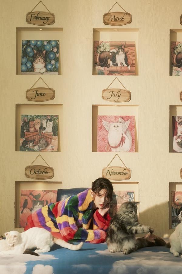 猫系少女陈瑶慵懒娇俏气质迷人