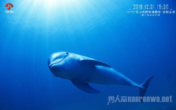 李宇春官宣再度携手江苏卫视2019年跨年演唱会!