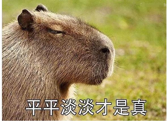 《诗意中国》热播 苏轼差点为了王安石留在南京?!