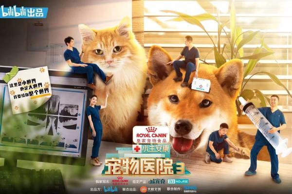 《宠物医院3》第一次概念预览官方公告回归精彩升级 治愈继续