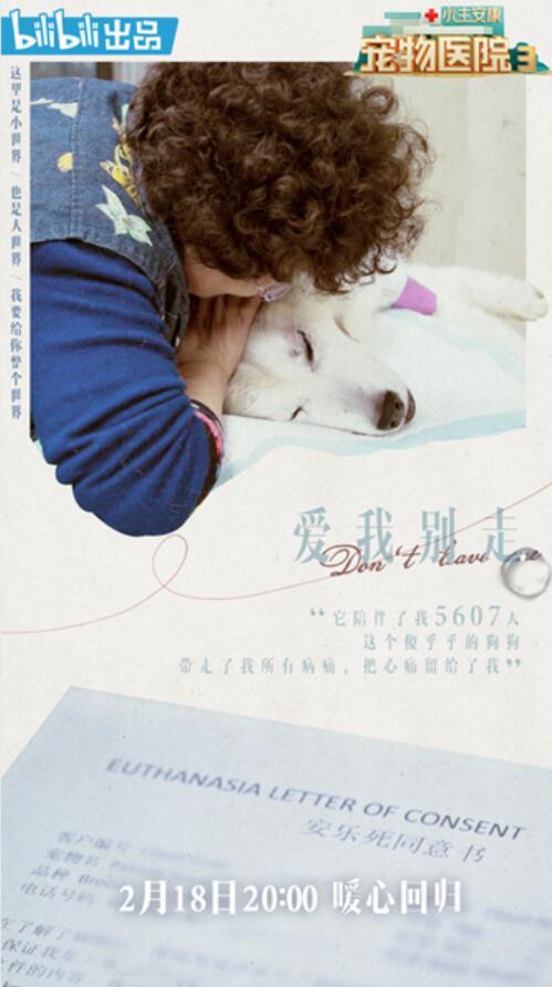 《小主安康宠物医院3》暖心播出 《宠物版世界》搬回来了