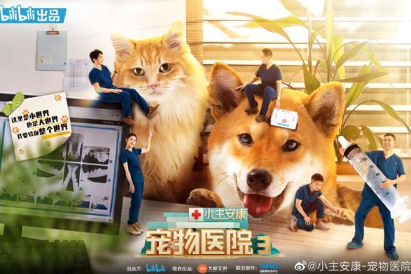 """《小主安康宠物医院3》暖心开播,""""宠物版人间世""""感动回归"""