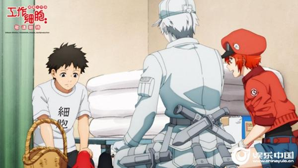 口碑佳作首登大银幕日本爆款动画《工作细胞》电影版确认引进