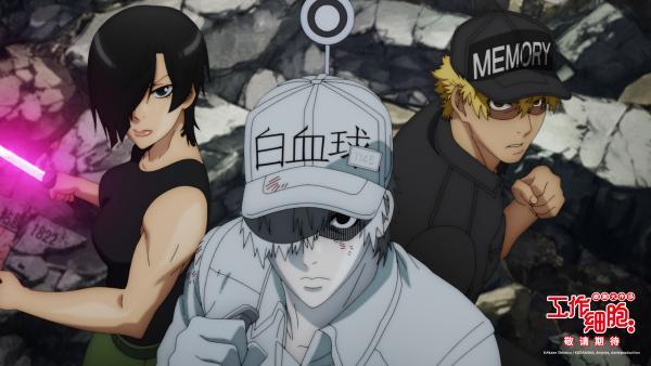 日本爆款动画《工作细胞》电影版确认引进